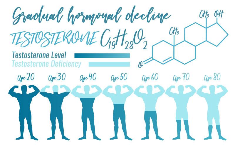 Range of Testosterone Levels